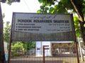 Tanah Luas dengan Ratusan Pohon Sengon di Banyuwangi Cocok Untuk Perumahan